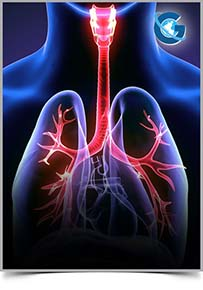 Pulmonary and Respiratory Medicine: Open Access