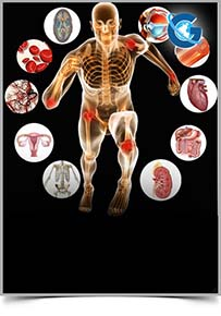 Human Anatomy and Physiology: Open Access