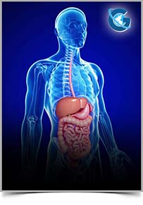 Journal of Digestive Diseases and Hepatology (ISSN: 2574-3511)