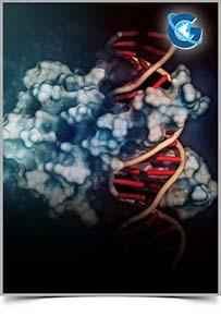 Advances in Proteomics and Bioinformatics