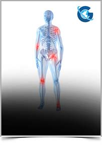 International Journal of Musculoskeletal Disorders